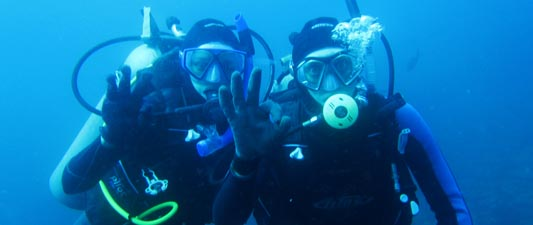 Diving in Ecuador and Galapagos