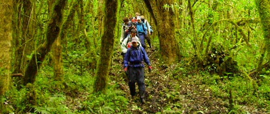 Hiking in Ecuador and Peru