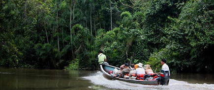 Ecuadorian Amazon Travel Guide