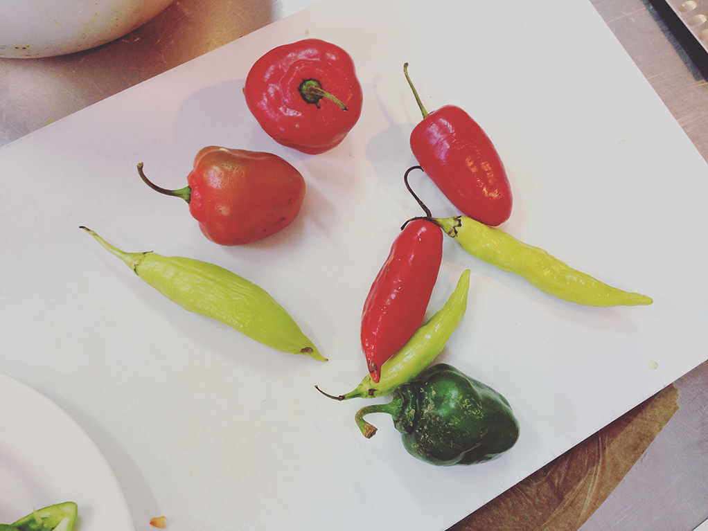 Learning About Chili Peppers And Potatoes In Cuenca